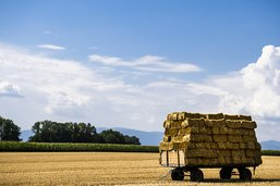 """""""Oui"""" aux deux initiatives agricoles et aux pistes cyclables"""