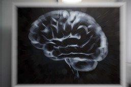 Le directeur du Human Brain Project a démissionné