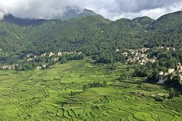 Des montagnes sculptées par le riz
