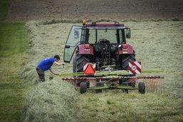 Fribourg veut mieux accompagner ses agriculteurs en difficulté