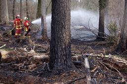 On peut à nouveau faire du feu dans les forêts fribourgeoises