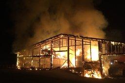 Une soixantaine d'animaux meurent dans l'incendie d'une ferme