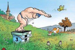 Villars-sur-Glâne: la piscine olympique n'est pas pour demain