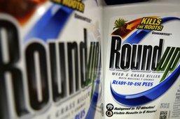 Procès du Roundup: l'appel de Monsanto rejeté, amende réduite