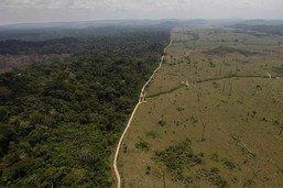 Bolsonaro: le Brésil restera dans l'Accord de Paris sous condition