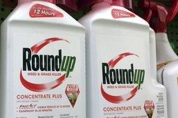 Procès Roundup: accord sur les dommages et intérêts à 78,5 millions