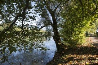 Un jeune Erythréen de 20 ans se noie dans l'Aar près d'Aarau