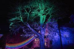 Le Festival des lumières de Morat ouvre ses portes