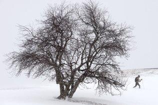 """La """"Fête des neiges"""" de Montréal stoppée par... la neige"""