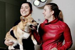 Jeunes vétérinaires face caméra