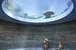 Les aquariums à l'index
