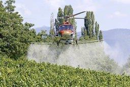 Pesticides sous le feu