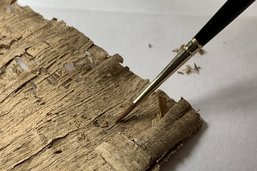 Le Musée Bible+Orient fait restaurer une collection inédite de papyrus