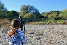 Des jeunes filment la nature
