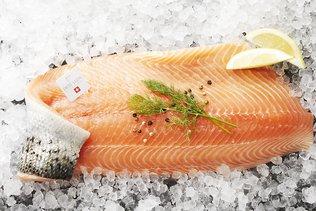 Pisciculture de saumons de l'Atlantique à Lostallo (GR)