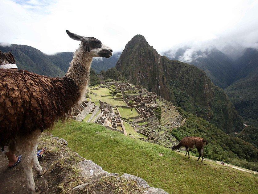Découverte de la chambre funéraire d'un noble inca au Pérou
