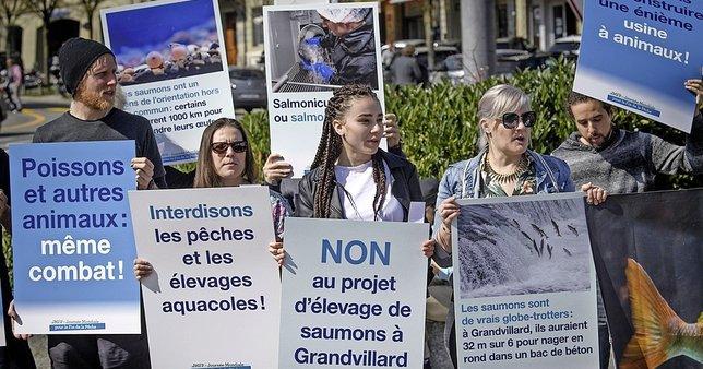 A Fribourg, une cinquantaine d'antispécistes ont manifesté samedi contre le projet de ferme piscicole de Grandvillard.  © Alain Wicht