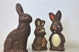 Dégustation de lapins de Pâques: à la recherche de l'incontournable?