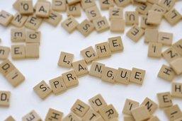 Fribourg propose son savoir-faire en matière de traductions
