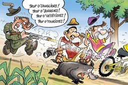 Dégâts aux cultures: Fribourg autorise des tirs de régulation cet été