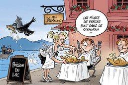 Le cormoran, ce fléau des pêcheurs