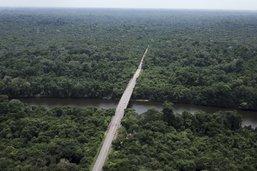 A New York, des indigènes brésiliens manifestent pour l'Amazonie