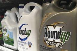 Nouveau procès Roundup: Monsanto condamné à verser 2 milliards