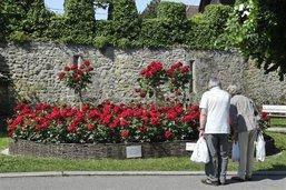 La commune de Guin, hôte du festival des roses à Estavayer-le-Lac