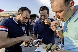 Une tonne de sardines engloutie