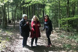 La forêt à pas contés