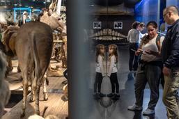 11e Nuit des musées à Fribourg