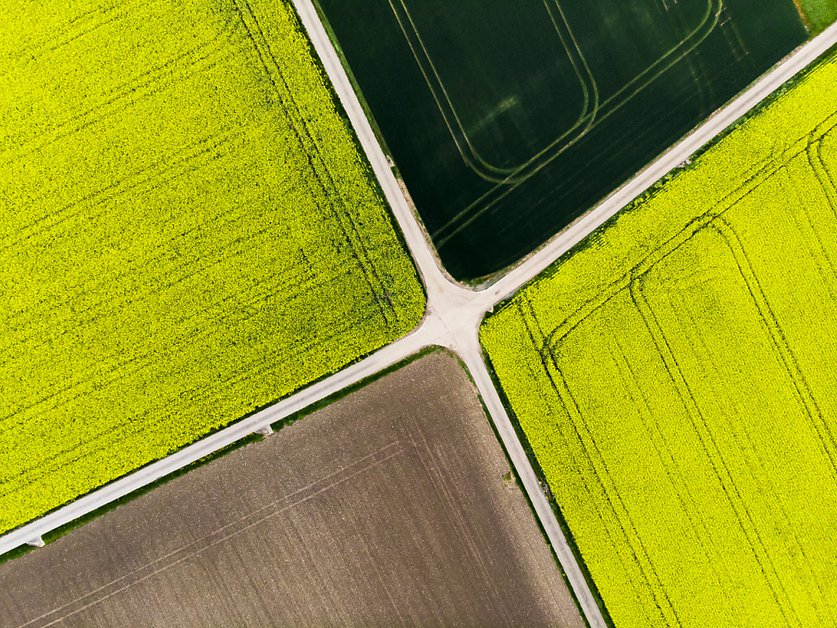 La sécurité sociale des paysannes doit être renforcée