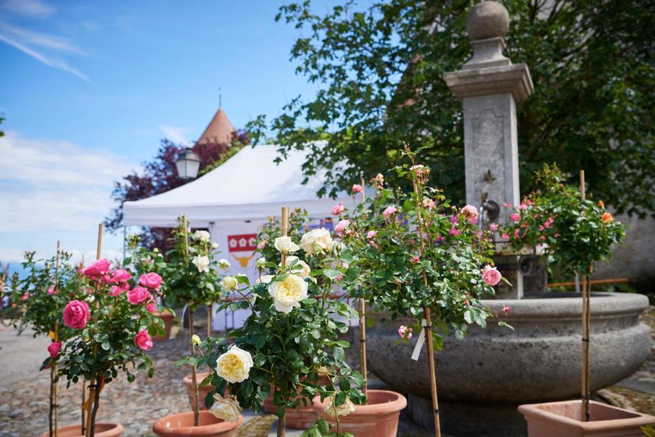 4e édition du Festival des roses