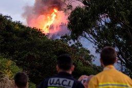 Violent incendie sur l'île de Grande Canarie, 5000 évacués
