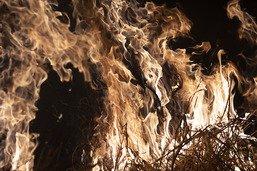 Des centaines de nouveaux incendies en Amazonie