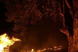 """Les incendies au Brésil sont """"sous contrôle"""""""
