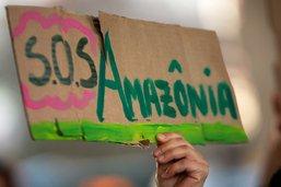 Sept pays signent le pacte de Leticia pour protéger l'Amazonie