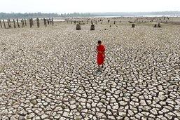 Mieux anticiper El Niño grâce à l'intelligence artificielle