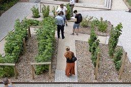 Le jardin public des remparts inauguré à Romont