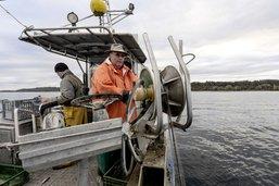 Le Grand Conseil prend la défense des pêcheurs professionnels
