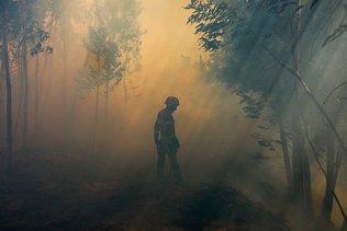Plus de 700 pompiers luttent contre des feux de forêt au Portugal