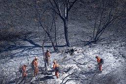 Légère accalmie sur le front des incendies en Californie