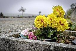 Des cimetières comme des déserts