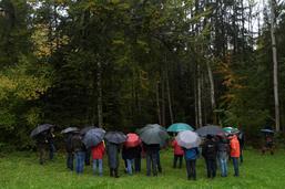 40 ans de ForêtGruyère