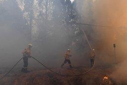 Feux de forêts en Australie: 2 pompiers perdent la vie