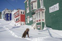 La neige ensevelit la ville la plus à l'est de l'Amérique du nord