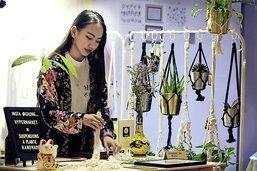 Des plantes, des cordes et une bonne dose de créativité