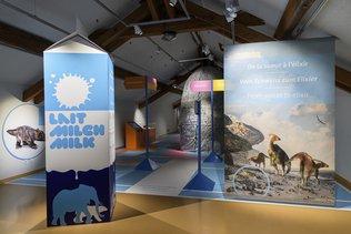 Une récompense pour le Musée d'histoire naturelle de Fribourg
