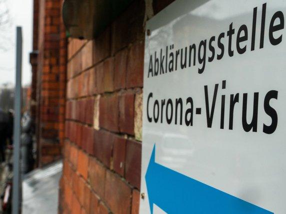 Coronavirus 8000 cas