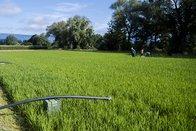 Broye: l'écoulement des cours d'eau diminue jusqu'à 77% en été